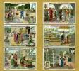 1907 Liebigbilder-Die Seide Liebig 717# guter zustand  2,70 EUR  zzgl. 3,95 EUR Versand