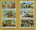 1932 Liebigbilder-Tierfreundschaften Liebig 1028# guter zustand  5,95 EUR  zzgl. 3,95 EUR Versand