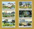 1933 Liebigbilder-Klima und Pflanzenwelt Liebig 1040# guter zustand  6,95 EUR  zzgl. 3,95 EUR Versand