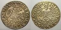 Halbgroschen 1550 Polen-Litauen Sigismund August 1544-1572. Stempelglan... 125,00 EUR