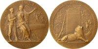 Medal  France  AU(55-58)  70,00 EUR  +  10,00 EUR shipping