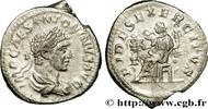 THE SEVERANS (193 AD to 235 AD) Denier 219...