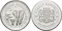 100 Shillings 2015, Somalia, Elefant, Verp...