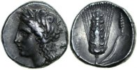Ancient Greece  290-280 BC. gVF LUCANIA - METAPONTION, AR Nomos/GRAIN EAR 580,00 EUR