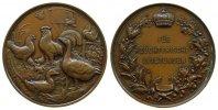 Prämienmedaille 1887 Tiere Bronze Geflügelzucht, Hausgeflügel / Schrift... 67,50 EUR  zzgl. 6,00 EUR Versand