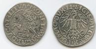 Halbgroschen 1549 Polen-Litauen M#3650 - Sigismund August 1544-1572 seh... 25,00 EUR  zzgl. 4,00 EUR Versand