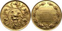 Jever-Stadt Vergoldete Bronzemedaille    140,00 EUR  zzgl. 5,00 EUR Versand