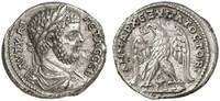 Tetradrachme  ROMAN COINS - GETA, 209-212 Vorzüglich  500,00 EUR  zzgl. 7,50 EUR Versand