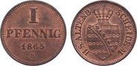 Cu Pfennig 1865  B Sachsen-Altenburg Ernst 1853-1908. vorzüglich +  25,00 EUR  zzgl. 3,50 EUR Versand