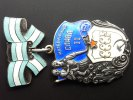 Orden des Mutterruhms 2. Klasse  Russland    35,00 EUR  zzgl. 4,00 EUR Versand