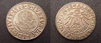 1 Groschen 1538 Preussen  vzgl  75,00 EUR