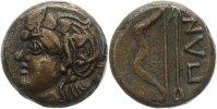 AE  Chersonesos unbek. Herrscher 390 - 110 v. Chr.. Sehr schön  75,00 EUR  zzgl. 4,00 EUR Versand