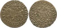1/2 Groschen 1557 Polen-Litauen Sigismund August 1547-1572. Sehr schön  34,00 EUR  zzgl. 4,00 EUR Versand