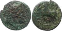 AE 350 - 270  v. Chr. Bruttium unbek. Herrscher 350 - 270 v. Chr.. Schö... 55,00 EUR  zzgl. 4,00 EUR Versand