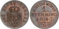 Cu Pfennig 1847  D Brandenburg-Preußen Friedrich Wilhelm IV. 1840-1861.... 65,00 EUR  zzgl. 4,00 EUR Versand