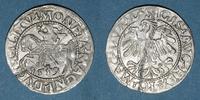 1559 EUROPA Lituanie. Grand Duché. Sigismond III Auguste (1544-1572). ... 18,00 EUR  zzgl. 8,00 EUR Versand