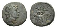 Bronze 100 Taurische Chersones/Pantikapaion Bronze ca. 100 - 75 v. Chr.... 95,00 EUR  zzgl. 3,00 EUR Versand