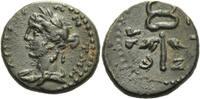 Bronze ( dichalkon) 146 - 147 Antiochia /Syrien Bronze 146 - 147 nach C... 120,00 EUR  zzgl. 3,00 EUR Versand