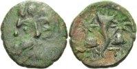 Bronze 200 - 150 Taurische Chersones/Pantiokapaion  sehr schön  40,00 EUR  zzgl. 3,00 EUR Versand
