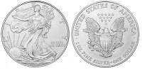 USA 1 Dollar - 1 Dollar Eagle 1996 unc Silber