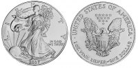 USA 1 Dollar - 1 Dollar Eagle 2007 unc Silber