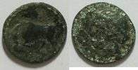 AE 16 mm 317 - 289 v.Chr Sizilien Kopf der Kore links Rs. Stier links s  19,00 EUR inkl. gesetzl. MwSt., zzgl. 4,50 EUR Versand