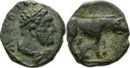 Syrien/Antiochia Uncia 98-117 n.Chr. SS / RAR Traian 100,00 EUR  zzgl. Versand