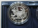 One Dollar 1995 Cayman Islands Endangered Wildlife Echse Proof  31,95 EUR  zzgl. 3,95 EUR Versand