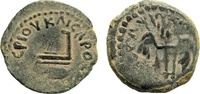 Prutah  Roman Provincial Pontius Pilate, 26-36 AD. Ears of barley ss  80,00 EUR  zzgl. 7,00 EUR Versand