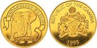 20 Dalasis Gold 1995 Gambia  Polierte Platte  220,00 EUR  zzgl. 7,00 EUR Versand